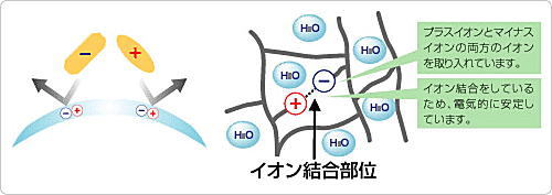 ワンデーピュアうるおいプラス乱視用の両性イオン素材